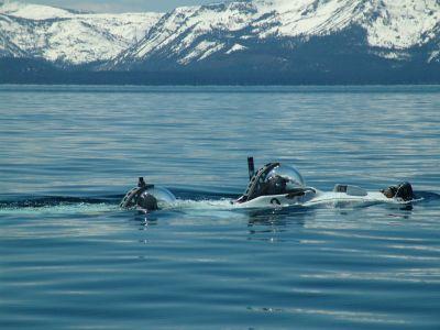 McLaren And Delgado - At Sea 5 - Excellent